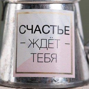 Лейка декоративная «Счастье ждёт тебя». 4.3 ? 3.7 см