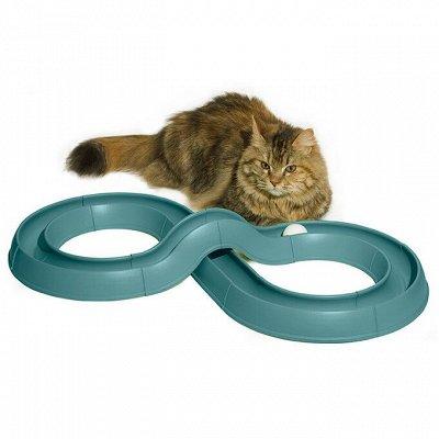 Детские игрушки и товары для питомцев в наличии — Игрушки для кошек