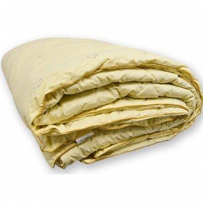 Выбери постельное белье для комфортного сна! — Одеяла — Полутороспальные