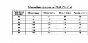 Футболка мужская 1100-013 черный