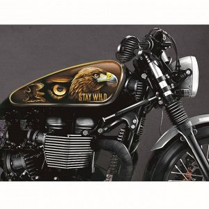 Набор наклеек на мотоцикл «Орёл», 2 шт