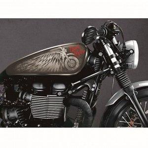 Набор наклеек на мотоцикл Dark Rider, 2 шт