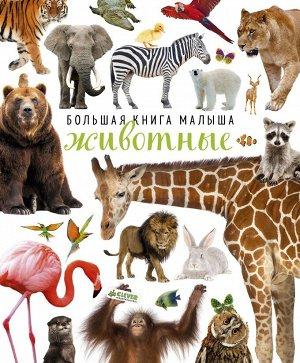 ДСнК. Большая книга малыша. Животные