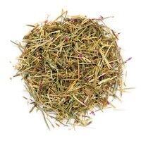 Золототысячник (трава)