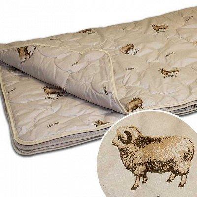 Одеяла и подушки по низким ценам+всем в подарок полотенце-11 — Одеяла 'Овечья шерсть'