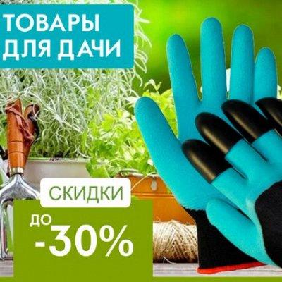#Бешеная белка! # Акции!  Экспресс-раздача!  №3 — Любимый сад и огород! — Сад и огород