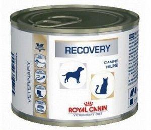Royal Canin Recovery диета влажный корм для собак и кошек в восстановительный период Рекавери 195гр консервы