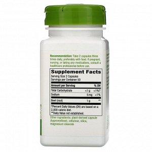 Nature&#x27 - s Way, Beet Root, 1,000 mg, 100 Vegan Capsules