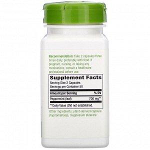 Nature&#x27 - s Way, Peppermint Leaf, 700 mg, 100 Vegan Capsules