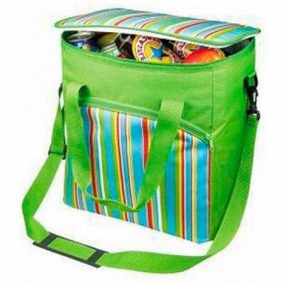 Эркор - 93 Все для спорта и отдыха на природе — Изотермические сумки и контейнеры, термосы — Термосы