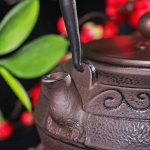 """Чайник 1,4 л """"Дари"""" с эмалированным покрытием, цвет черный"""