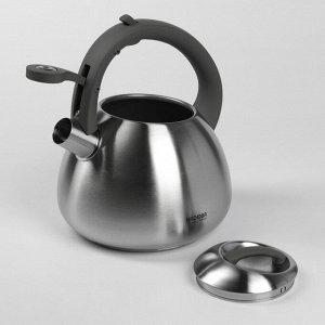 Чайник со свистком Nadoba, 2,7 л