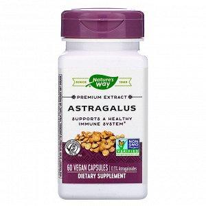 Nature&#x27 - s Way, Astragalus, 60 Vegan Capsules
