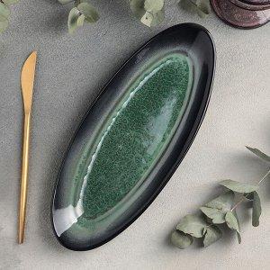Блюдо для рыбы «Verde notte», 11,5?28 см