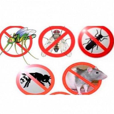 Все для всего . Отличный выбор!Защитная сетка для огорода  — Различные средства для травли насекомых и грызунов — Для травли тараканов, клопов