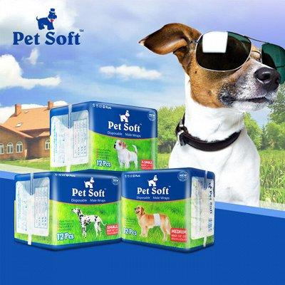 Karmy - корм для собак и кошек премиум класса! №24 — Подгузники для домашних животных - Япония — Уход