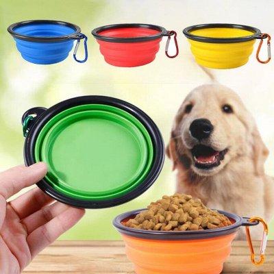 Karmy - корм для собак и кошек премиум класса! Новинки! №21 — Силиконовая складная миска для животных — Для животных