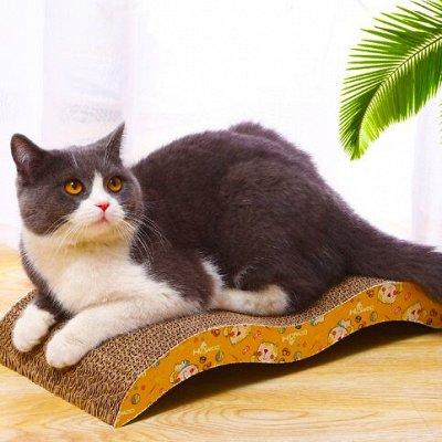 Karmy - корм для собак и кошек премиум класса! Новинки! №20 — Когтеточки для кошек — Когтеточки