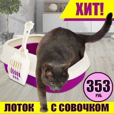 Karmy - корм для собак и кошек премиум класса! №24 — Туалет для кошек с совком — Туалеты и наполнители