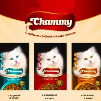 Karmy - корм для собак и кошек премиум класса! №24 — Chammy с любовью и заботой о Вашем питомце — Корма