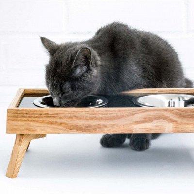 Domosed.online - Товары для животных   — Подставки, миски, кормушки, поилки. Б — Миски и поилки для кошек
