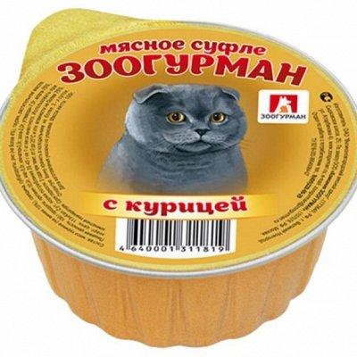 Domosed.online - Товары для животных   — Корма для кошек и собак Зоогурман, Дадо, КПК, Мамонт. Б — Корма