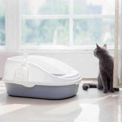 Domosed.online - Товары для животных   — Туалеты, совки, наполнители. Б — Туалеты и наполнители