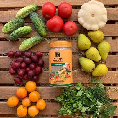 Урожай круглый год! Удобрения для овощей по лучшей цене