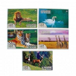 Альбом для рисования А4, 32 листа на гребне «Животный мир», обложка картон 230 г/м2, выборочный лак, блок офсет 100 г/м2, 5 видов, МИКС