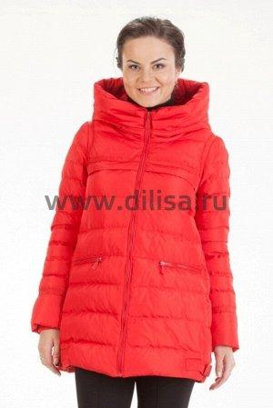 Куртки Куртка DAM B014-253_Р (Красный)  Артикул: 253_Р; Бренд: DAM; Сезонность: Демисезон; Артикул: 253_Р; Бренд: DAM; Сезонность: Демисезон; Цвет: Красный; Оттенок: Красный; Мех: Нет; Утеплитель: Син