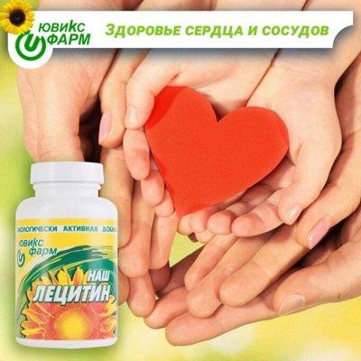 Хиты ЭКО продуктов. Выбирай самое лучшее и полезное! — Наш Лецитин — БАД