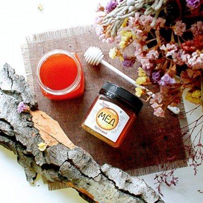 Лесные продукты. Сиропы Гималашка, мед, папоротник.   — МЁД — Мед