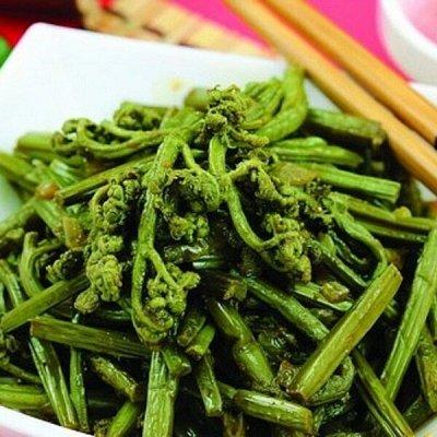 Лесные продукты. Сиропы Гималашка, мед, папоротник.   — ПАПОРОТНИК — Овощные и грибные
