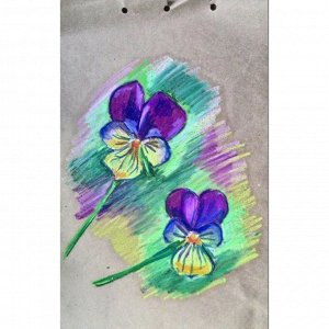 Пастель масляная, 50 цветов, Pentel, 8/60мм, в картоне