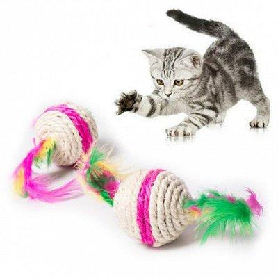 Догхаус. Быстрая закупка зоотоваров   — Игрушки для кошек — Игрушки