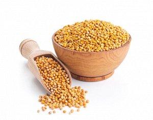 Горчица жёлтая (семена)