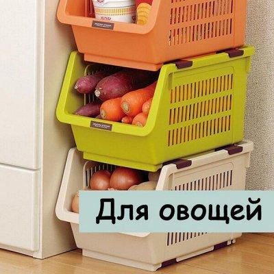 Наведем в шкафу порядок — Для хранения овощей — Сад и огород