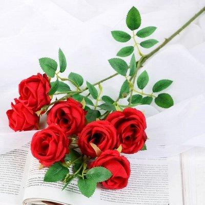 Все для интерьера — Товары для флористического декора-2. — Интерьер и декор