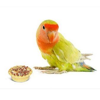 Догхаус. Большая закупка зоотоваров  — Корма и лакомства для птиц — Корма