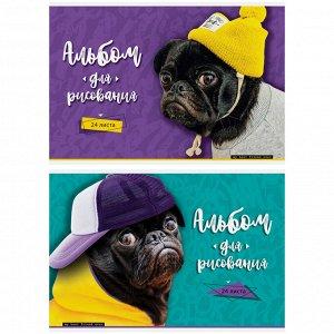 """Альбом для рисования 24л., А4, на скрепке ArtSpace """"Питомцы. Pug"""""""