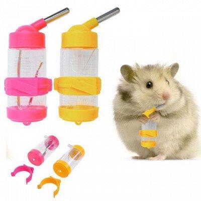 🐶 Догхаус. Большая закупка зоотоваров  — Миски, клетки и аксессуары для грызунов — Аксессуары и игрушки