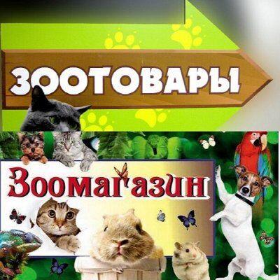 ★Все в наличии!★Люстры,товары для дома,тейпы, защитные маски — Счастливые Питомцы -Лучшие Друзья  — Для кошек