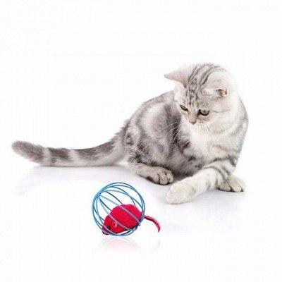 Догхаус. Большая закупка зоотоваров  — Игрушки для кошек — Игрушки