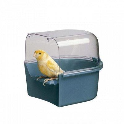 Догхаус. Большая закупка зоотоваров  — Игрушки, гигиена, миски для птиц — Аксессуары