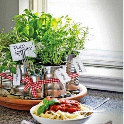 Sweet Garden. Всё для сада и огорода и не только.  — Огород на окне — Семена зелени и пряных трав