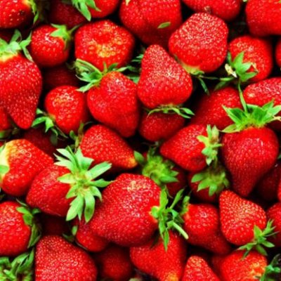 Саженцы плодовых и декоративных растений! Последняя в сезоне — Земляника, земклуника! — Плодово-ягодные