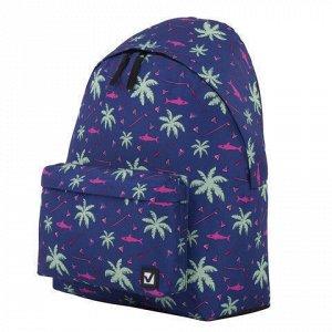 """Рюкзак BRAUBERG, универсальный, сити-формат, """"Пальмы"""", 20 литров, 41х32х14 см, 228864"""