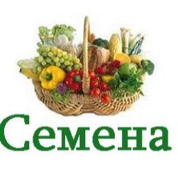 Школьный базар, семена, одежда по приятным ценам. — Дачникам — Семена овощей