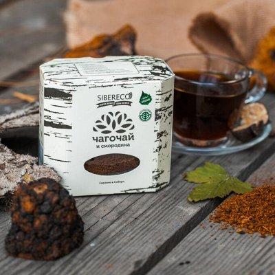 Кедрокофе,чагочай + НОВИНКИ от компании Sibereco — Чагочай — Чай