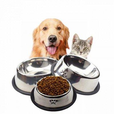 Зверьё Мое — корма, лакомства, аксессуары.  — Миски, поилки для кошек и собак — Миски и поилки для собак